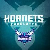 Hornets_Domination