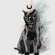 Moon_Cat