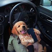 Bige_Diesel